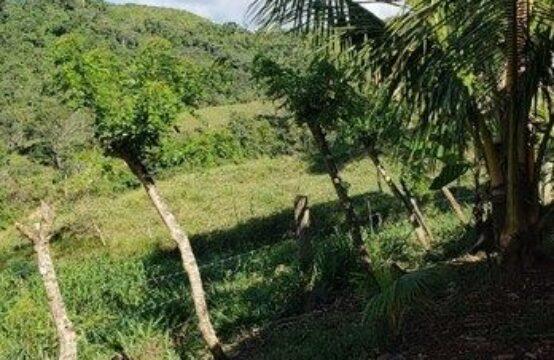 Propiedad en Las Delicias, de Rio Blanco, 160 manzanas de terreno