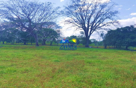 Propiedad de 50 manzanas de terreno, ubicadas en San Pedro de La Joya, Juticalpa